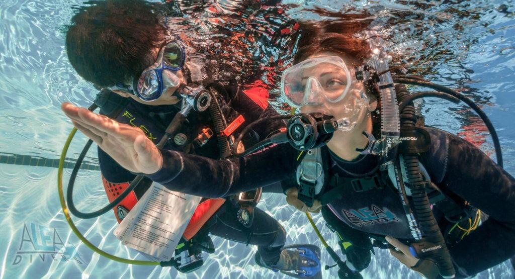 ochutnavaci ponor ALEA Divers